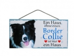 Hundeschild Border Collie